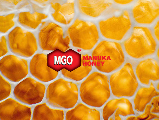 Manuka honey MGO medový plást